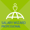 Salary Wizard Professional