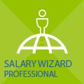 Salary Wizard Professional